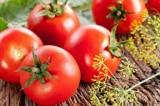 Cô giáo viên dùng cà chua để học sinh học cách buông bỏ lòng oán hận