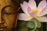 Đức Phật kể câu chuyện nhân quả kiếp trước kiếp này