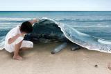 Nếu đem chia đều, mỗi người trên thế giới sẽ nhận 1 tấn rác thải nhựa