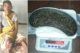 Chuyện lạ: Một phụ nữ Ấn Độ có hơn 70 cây đinh trong chân, bác sĩ chưa thể giải thích