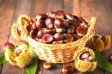 'Vua của các loại quả mùa thu', mỗi ngày ăn vài quả rất tốt cho mạch máu