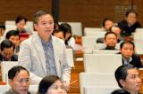 ĐBQH: Cần công khai hoạt động lấn chiếm biển đảo của Trung Quốc