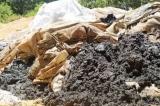 Chôn chất thải độc hại trái phép, Formosa bị phạt 560 triệu đồng