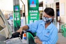 Xăng E5 sản xuất ở Việt Nam có thật sự tốt hơn cho môi trường?