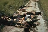 Lá thư khiến người Mỹ thức tỉnh về vụ Thảm sát Mỹ Lai