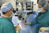 Nữ bệnh nhân 15 tuổi bị viêm não mô cầu, 14 người phải cách ly