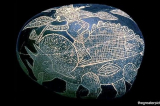 Những phát hiện bị che giấu về lịch sử cổ đại (P2): Khủng long và con người
