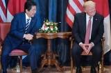 Vừa tái cử lãnh đạo đảng cầm quyền, Abe sẽ họp thượng đỉnh với Trump