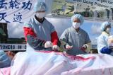 Tòa án: Trung Quốc thu hoạch nội tạng, phạm tội ác Chống lại loài người