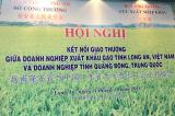 22 doanh nghiệp Trung Quốc đến Việt Nam tìm mua gạo