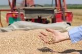 Tập đoàn Úc mua lại nhà máy chế biến gạo của Việt Nam