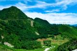 Việt Nam đứng thứ 5 TG, thứ nhất Đông Nam Á về xuất khẩu gỗ