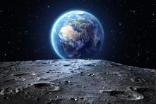 Giờ đây, trên Mặt Trăng đã có cây và động vật (bởi Trung Quốc)