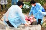 Dịch tả lợn châu Phi lan tới Thừa Thiên – Huế