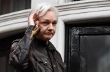 Họa vô đơn chí, nhà sáng lập WikiLeaks bị xóa tư cách công dân Ecuador