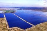 EVN cấp tập đầu tư đường dây vì quá tải điện mặt trời