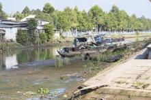 Xâm nhập mặn tại cửa sông Cửu Long gia tăng trong dịp Tết