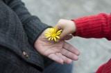 Vì sao chúng ta phải tử tế? 3 câu chuyện suy ngẫm