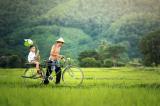 Làm con nên nhớ – Nguyễn Hiến Lê