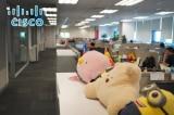 Cuộc chiến thương mại Mỹ – Trung: Cisco giải tán chi nhánh Thượng Hải