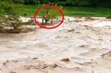 5 người chết, 14 người mất tích do bão số 3