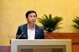Quy định đại biểu Quốc hội chỉ được mang một quốc tịch Việt Nam