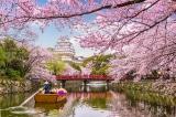 Chính phủ Nhật đầu tư 12,5 tỷ USD để mời bạn đến du lịch
