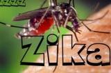 Bệnh nhân mắc virus Zika tại Đà Nẵng đã bình phục