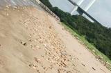 Hơn 20 tấn chân và nội tạng lợn nằm la liệt khắp bãi biển ở Trung Quốc