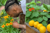 """""""Làm vườn giúp tôi cảm nhận được sự kết nối với Trái Đất và thiên nhiên"""""""