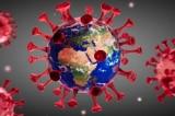 Vì sao dịch COVID-19 tái phát nhanh chóng tại Trung Quốc và thế giới?